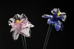 gciliax-flowers.jpg