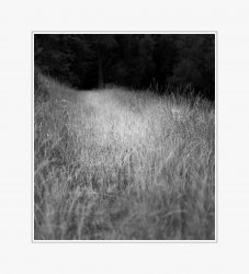 Landscapes in Monochrome_02.jpg
