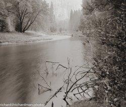 LF202010-Yosemite-003-positive-Edit.jpg