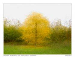 20201102_BERLIN_Autumn_Combo_02_framed_metadata.jpg