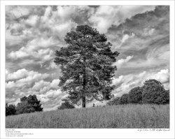 Colson_210505_DSCF0397-Edit-b&w-FrameShop.jpg