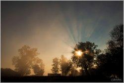 Sunrise-Federsee-3.jpg