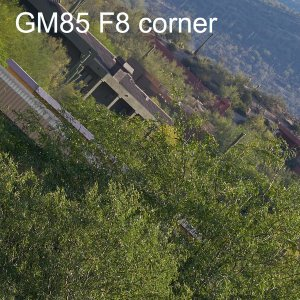 gm f8 417096