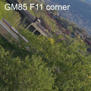 gm f11