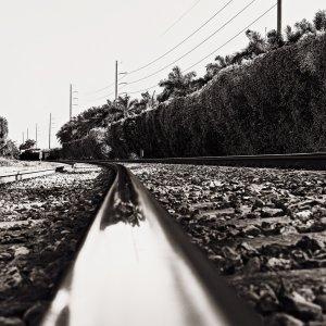 Curve Track